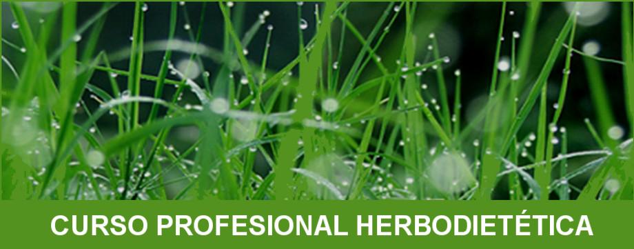 Aprender Herbología… el misterio de la Naturaleza
