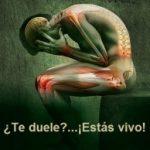 el dolor es un mecanismo de defensa