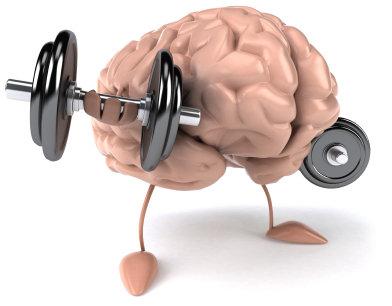 El cerebro: cómo mantenerlo joven