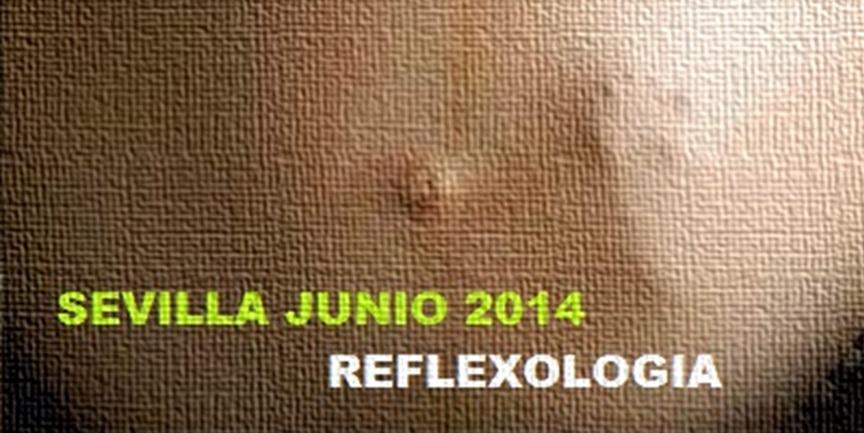 SEVILLA: Mañana comienza el Curso de Reflexología (especial embarazo y parto)