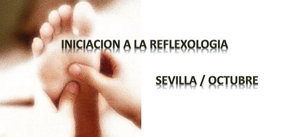 SEVILLA: Introducción a la Reflexología