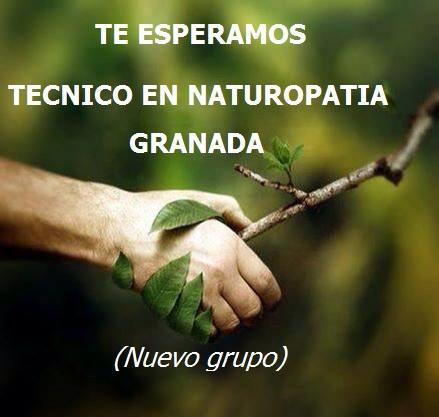 Granada: Técnico en Naturopatía. Nuevo Grupo