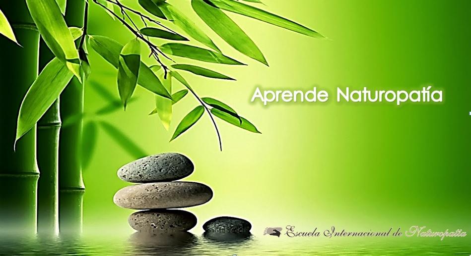 Albacete: Comienza Técnico en Naturopatía.