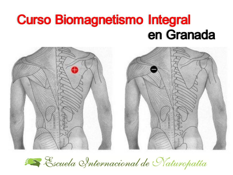 Granada: Curso Biomagnetismo Integral