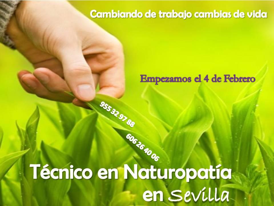 Sevilla: Técnico en Naturopatía (Presencial)