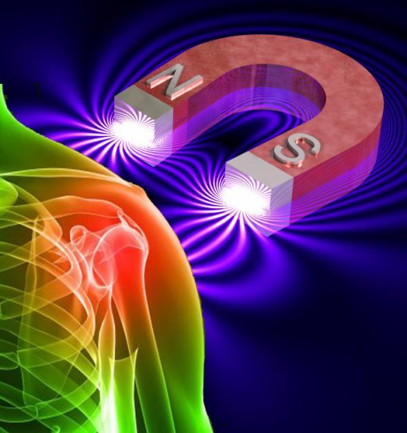 Biomagnetismo Integral…Ahora ON LINE