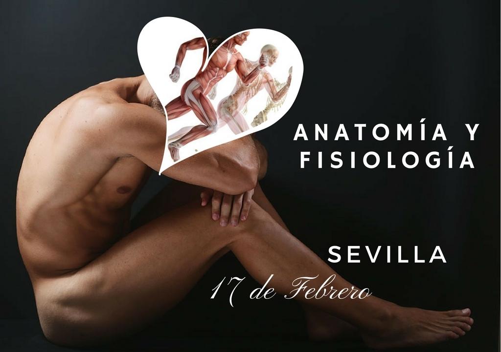 Sevilla: Anatomía y Fisiología para Naturópatas