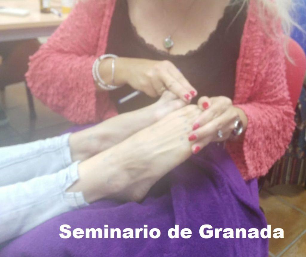 Seminario Presencial Granada