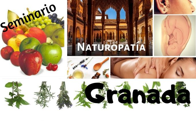 ✅ Seminario Práctico en Granada