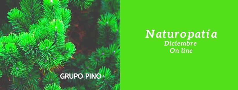 ✅ Nuevo Grupo Naturopatía: YA