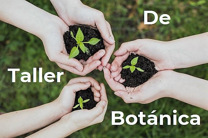 Taller de Botánica: Las Plantas y Tú